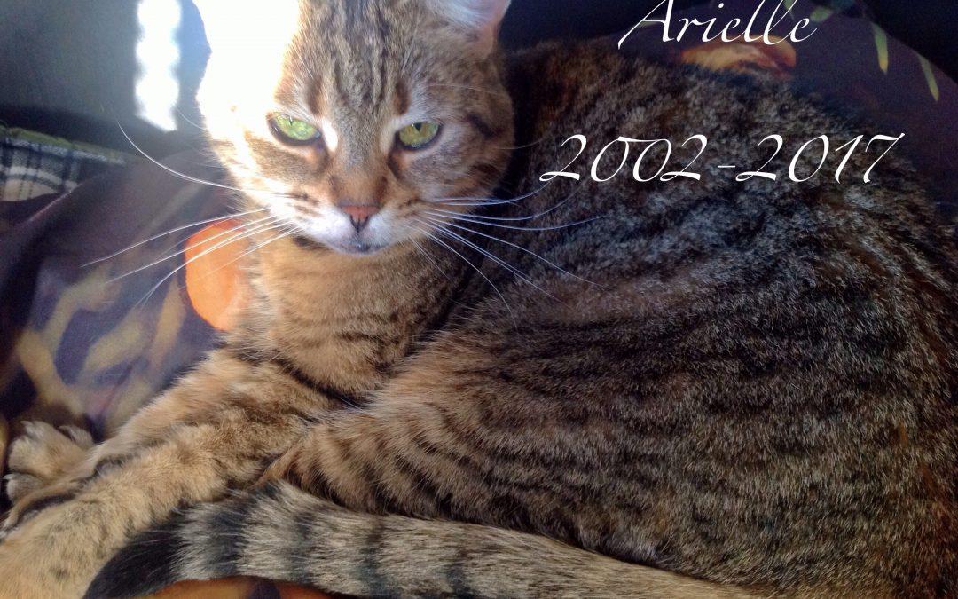 Au revoir Arielle, mon doux coeur de maman