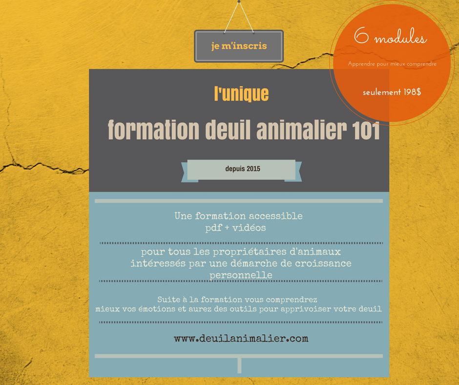 formation deuil animalier promo.png